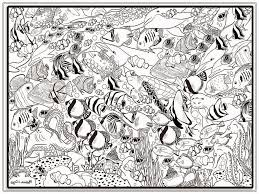 coloring pages for grown ups fish coloring pages for adults chuckbutt com