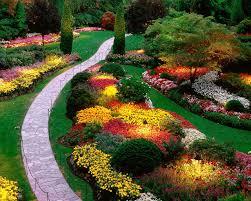 garden ideas oklahoma redbud brightest flowers ten roses that