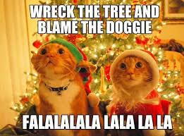 Christmas Cat Memes - cat wrecks christmas tree funny pictures quotes memes funny