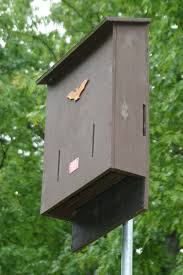 bat house plans free 37 free diy bat house plans that will attract