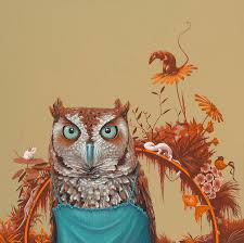 owl art fine art america