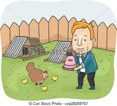 Backyard Clip Art Clipart Vector Of Man Chicken Backyard Illustration Of A Man