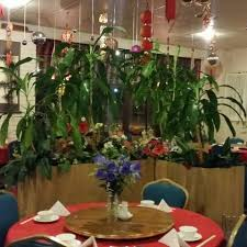 my place chinese restaurant home gold coast queensland menu