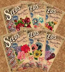 vintage seed packets altered artifacts free antique flower seed packets printable