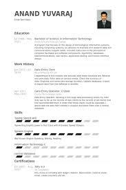 Tally Resume Sample by Data Entry Clerk Resume Samples Visualcv Resume Samples Database