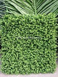 garden wall plants best quality indoor vertical garden wall for decoration buy
