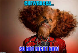 Chewbacca Memes - cross pollinating memes imgflip