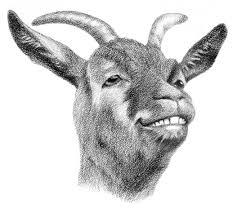Horn And Hoof Flag The Goat Spy Diaries U2013 U201coye Jassasa U201d U2013 Chapati Mystery