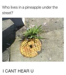 Ananas Pineapple Meme - who lives in a pineapple under the street i cant hear u meme on me me