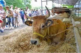chambre d agriculture ni re dijon dijon il n y aura pas de vaches au jardin darcy