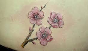 sakura flower tattoo flowers ideas for review