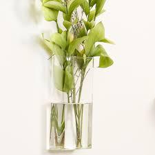 Display Vase Wall Mounted Transparent Vase