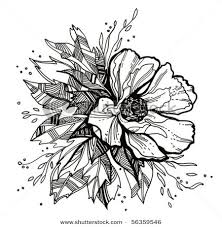 84 best drawing flowers images on pinterest drawing flowers