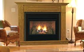 free standing natural gas fireplaces stovers