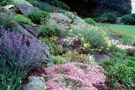 pictures of rock gardens