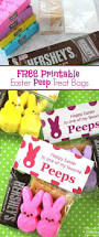 Easter Food Decorations Craft by Best 25 Easter Stuff Ideas On Pinterest Happy Easter Sunday
