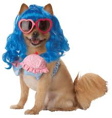 first look at new celebrity dog costumes costume craze blog