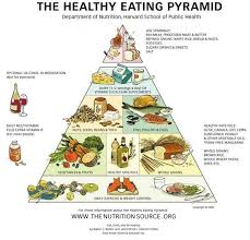 the vegetarian food pyramid u2014 theveggietraveler com eating