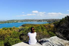 20 Great Dog Walks Around Sydney And Central Coast Australian Sydney Day Trips Spit Bridge To Manly Coastal Walk U2013