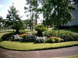 landscaping design florida landscaping today