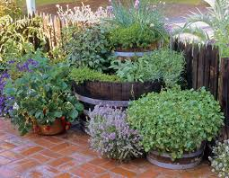 Potted Garden Ideas Herb Container Ideas 35 Herb Container Gardens Pots Planters