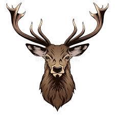deer head deer head stock vector illustration of black design 57432853