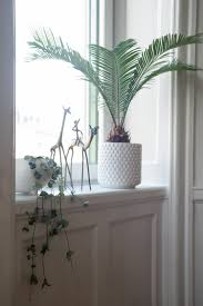 Urban Jungle Living And Styling by Urban Jungle Bloggers Book Giveaway U0026 New Beginnings
