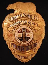 bureau de probation probation director city of los angeles county probation department