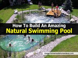 natural swimming pool homemadehomeideas com jpg