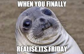 Finally Friday Meme - awkward moment sealion meme imgflip