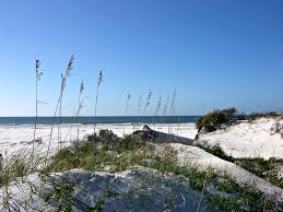 Alabama wildlife tours images Ten easy day trips from gulf shores alabama jpg
