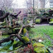garten köln cologne zoological garden 951 photos 167 reviews zoos