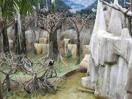 brookfield zoo baboon island glct mapio net