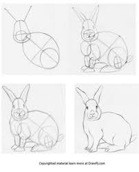 rabbit learn to draw pinterest rabbit drawing techniques