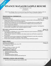 Director Of Finance Resume Examples by Finance Manager Resume Sample