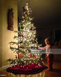 toddler enchanted by tree lights and ornaments in