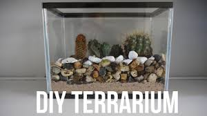 diy terrarium using an old fish tank easy youtube