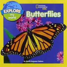 32 butterfly u0026 caterpillar picture books for kids u2022 sammy approves