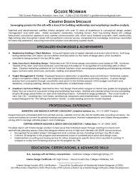 Expert Resume Executive Resume Samples Top Resume Samples Professional