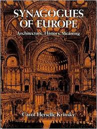 synagogues of europe architecture history meaning dover books