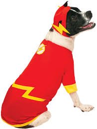 pet costume halloween flash pet costume l walmart com
