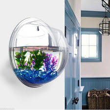 mounted wall acrylic fish tank bowl bubble aquarium hanging