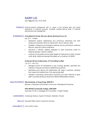 professional services consultant cover letter computer programmer