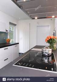 kitchen modern style modern style white kitchen with induction cooker and design
