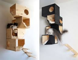 Shelves For Cats by 22 Creative Furniture Ideas For Cats Part 3 Wall Mounted Cat