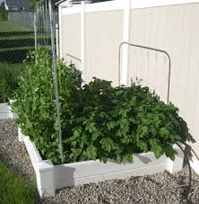 How To Plant Vertical Garden - growing vertical u2013how to support your plants u2013 my square foot garden