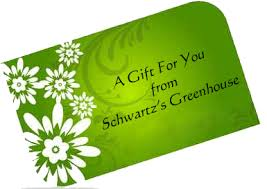 gift card fundraiser gift card fundraiser program gift card ideas