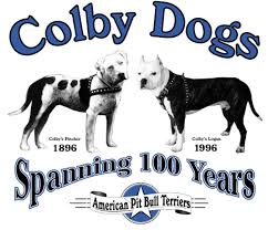 american pitbull terrier breeders st louis john p colby family and dogs page 7