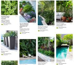 Backyard Plant Ideas Pool Landscaping Design Services U0026 Ideas Home Outside