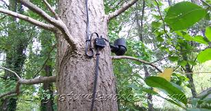 Landscape Lighting Junction Box - nice led landscape tree lights led lighting home lighting design